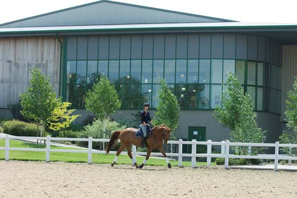 student riding a horse outdoors at Hartpury